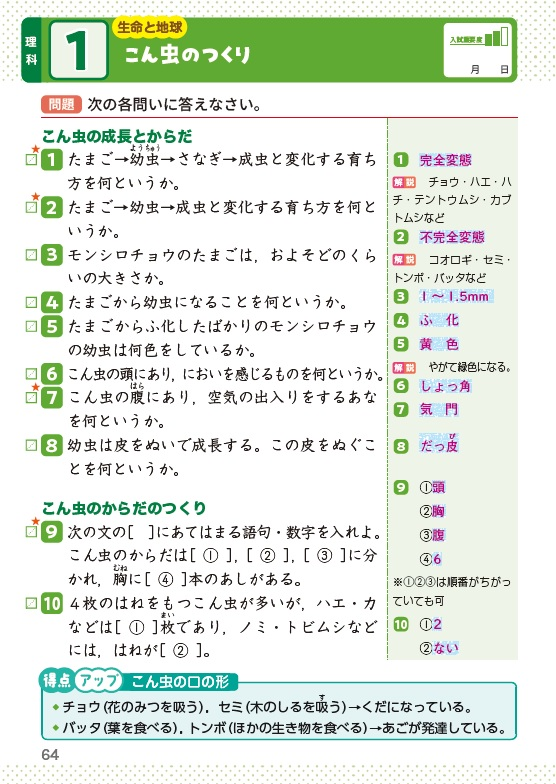 tou_01.jpg