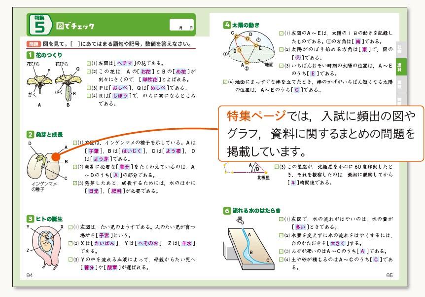 tou_02.jpg